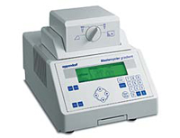The Eppendorf Mastercycler Gradient